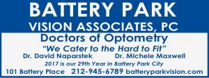 batteryparkvisionDAILYad2017
