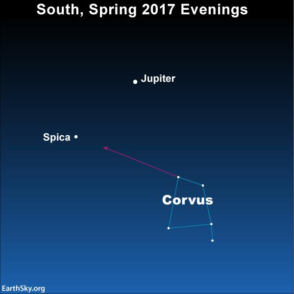 This year we have brilliant planet Jupiter to guide us to the star Spica and the constellation Corvus the Crow.