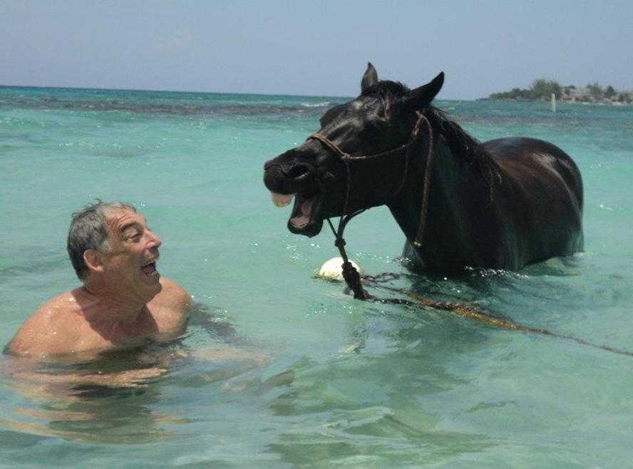 bob-and-horseDAILY