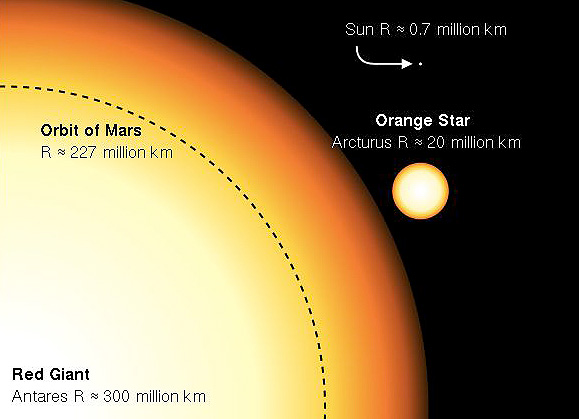 Arcturus is roughly 25 times greater in diameter than our sun. Arcturus/Antares/sun size comparison image via Wikimedia Commons.