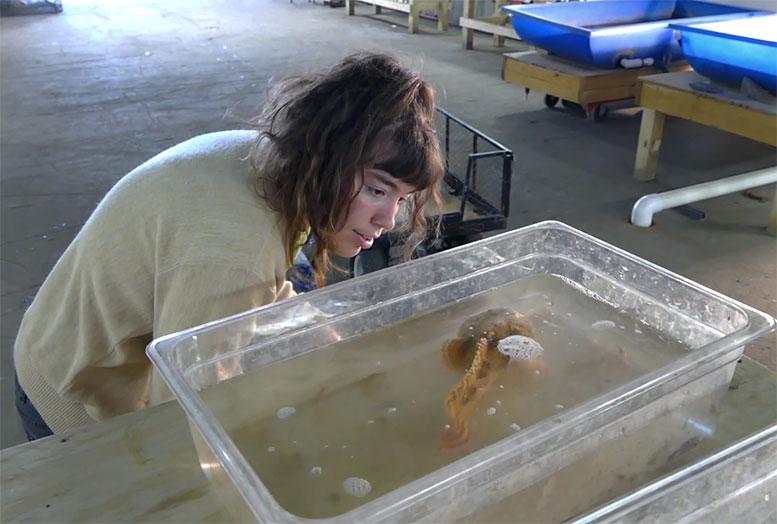 riverprojectwetlabgirlfish